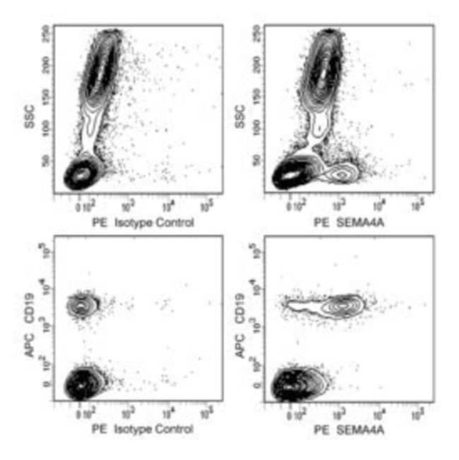 SEMA4A Mouse anti-Human, PE, Clone: T9-10, BD 100µg; PE:Life Sciences