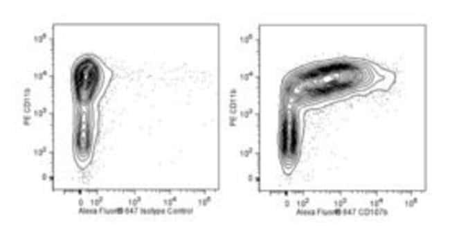 CD107b Rat anti-Mouse, Alexa Fluor 647, Clone: M3/84, BD 0.1mg; Alexa Fluor