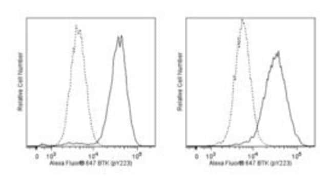 Btk (pY223)/Itk (pY180) Mouse, Alexa Fluor 647, Clone: N35-86, BD 50 Tests;