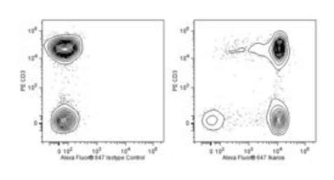 Ikaros Mouse anti-Human, Alexa Fluor 647, Clone: R32-1149, BD 50 Tests;