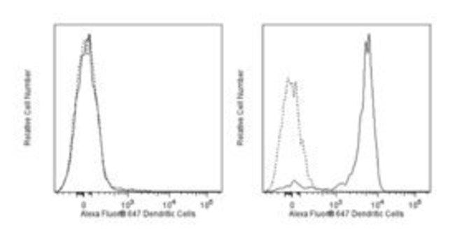 Dendritic Cells Rat anti-Mouse, Alexa Fluor 647, Clone: 33D1, BD 0.1mg;