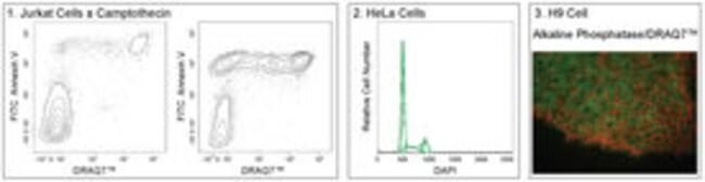 BDDRAQ7 DRAQ7:Cell Analysis Products