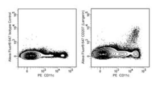CD207 (Langerin) Mouse anti-Mouse, Alexa Fluor 647, Clone: 81E2, BD 50µg;