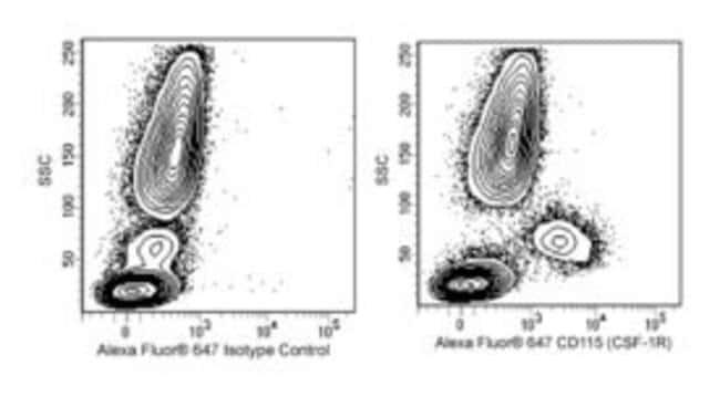 CD115 Rat anti-Human, Alexa Fluor 647, Clone: 9-4D2-1E4, BD 100 Tests;