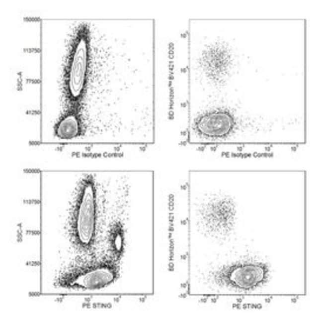 STING Mouse anti-Human, PE, Clone: T3-680, BD 50 Tests; PE:Antibodies