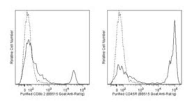 Ig Goat anti-Rat, BB515, Polyclonal, BD 50µg; BB515:Life Sciences