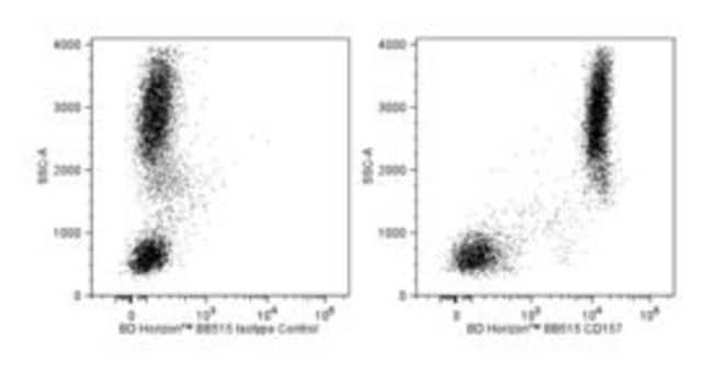 CD157 Mouse anti-Human, BB515, Clone: SY/11B5, BD 50 Tests; BB515:Life