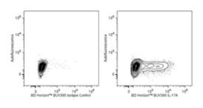 IL-17 Rat anti-Mouse, BUV395, Clone: TC11-18H10, BD 50µg; BUV395:Life