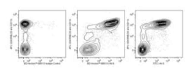 I-A/I-E Rat anti-Mouse, BB515, Clone: 2G9, BD 0.1mg; BB515:Life Sciences