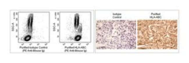 HLA-ABC Mouse anti-Human, Unlabeled, Clone: EMR8-5, BD 0.1mg; Unlabeled:Life