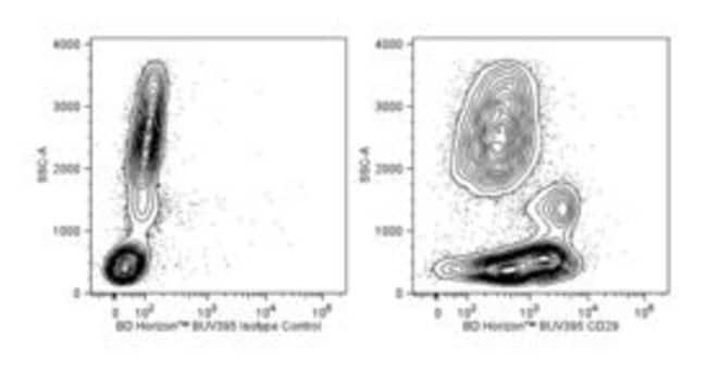 CD29 Mouse anti-Human, BUV395, Clone: MAR4, BD 50 Tests; BUV395:Life Sciences