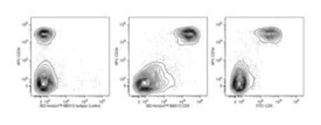 CD5 Rat anti-Mouse, BB515, Clone: 53-7.3, BD 50µg; BB515:Life Sciences