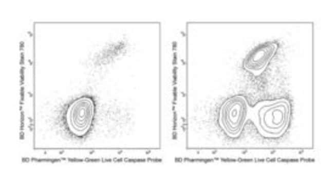 BD Yellow-Green Live Cell Caspase Probe Yellow-Green Live Cell Caspase