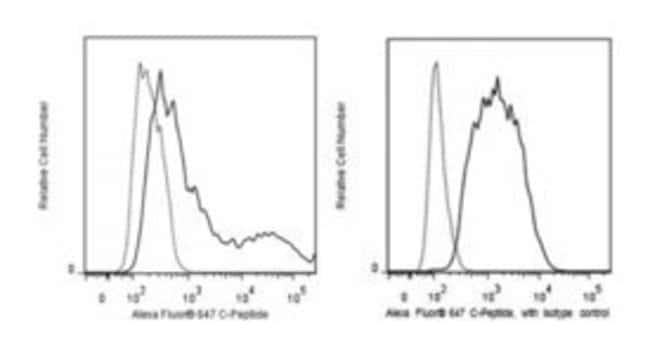 C-Peptide Mouse, Alexa Fluor 647, Clone: U8-424, BD 50µg; Alexa Fluor