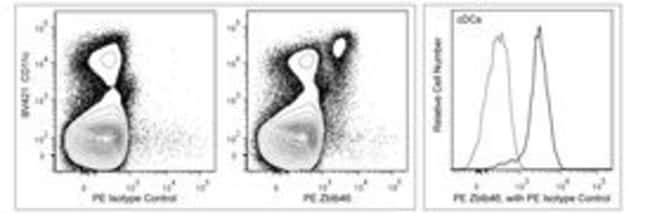 Zbtb46 Rat anti-Mouse, PE, Clone: U4-1374, BD 50µg; PE:Life Sciences