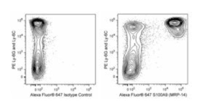S100A9 Rat anti-Mouse, Alexa Fluor 647, Clone: 2B10, BD 25μg; Alexa