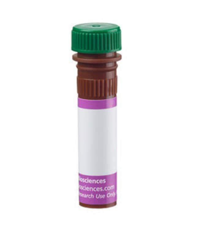 BD BV480 Mouse Anti-Human CD5 100 tests:Life Sciences