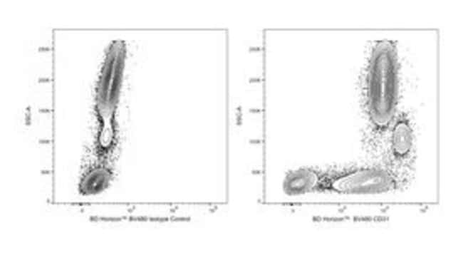 BD BV480 Mouse Anti-Human CD31 100 tests:Life Sciences