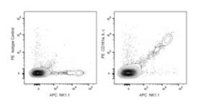 CD161a, b, c Rat anti-Mouse, PE, Clone: 16.1, BD 50μg; PE:Antibodies