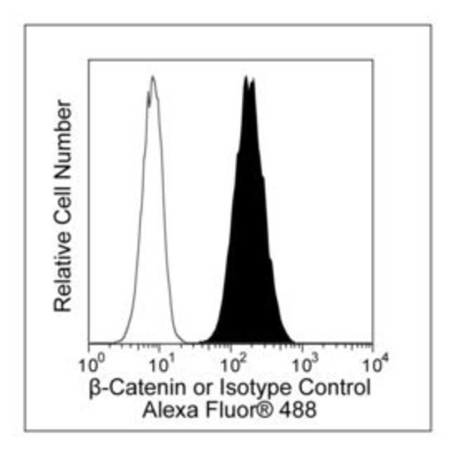 -Catenin Mouse, Alexa Fluor 488, Clone: 14/Beta-Catenin, BD 100 Tests;