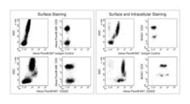 CD222 Mouse anti-Human, Alexa Fluor 647, Clone: MEM-238, BD 25µg;