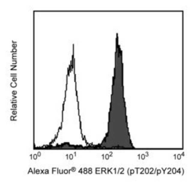 ERK1/2 (pT202/pY204) (p44/42 MAPK; Extracellular signal-Regulated Kinase