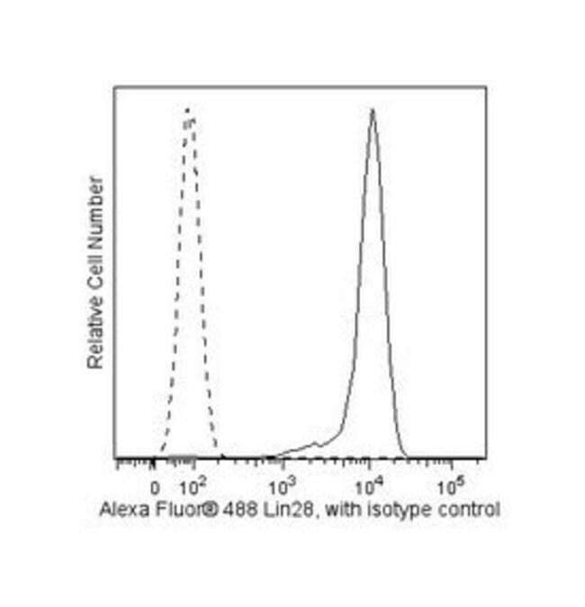 Lin-28 Mouse anti-Human, Alexa Fluor 488, Clone: 6D1F9, BD 50 Tests; Alexa