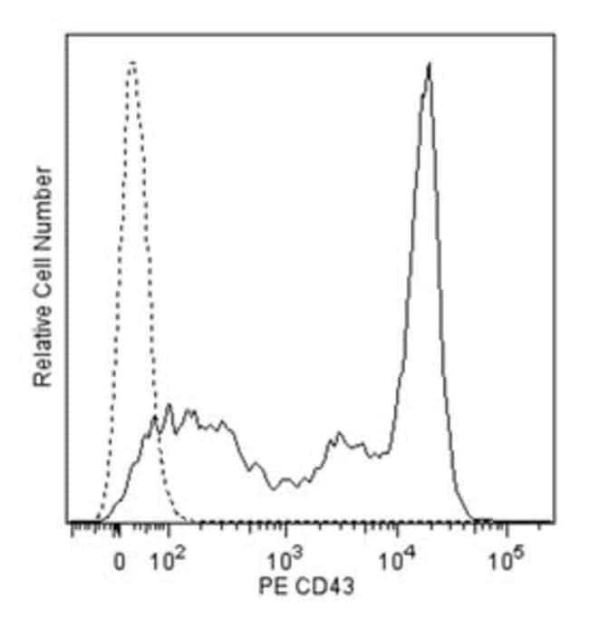 CD43 Rat anti-Mouse, PE, Clone: S7, BD 0.2mg; PE CD43 Rat anti-Mouse, PE, Clone: S7, BD