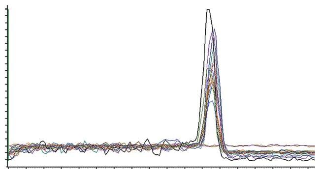 MaximaMaxima SYBR Green/ROX qPCR Master Mix (2X): qPCR Master Mixes PCR Reagents and Kits