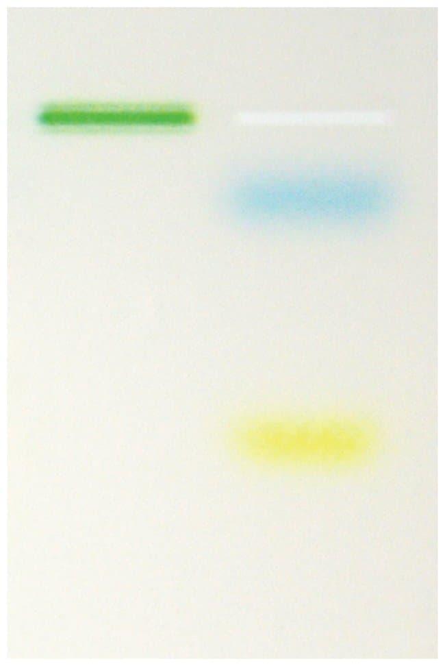 Thermo Scientific Maxima Hot Start Green 2X PCR Master Mix:Life Sciences:Biochemicals