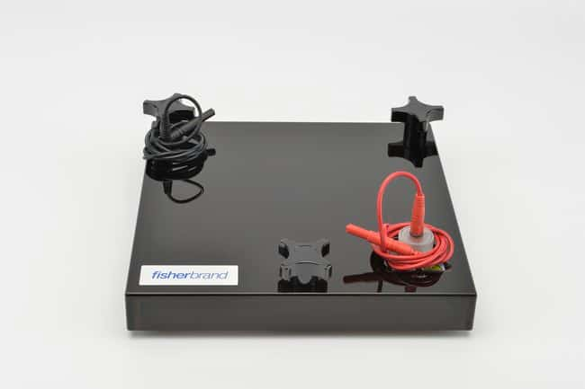 Fisherbrand Semidry Blotting Apparatus  20 x 20cm; 9.75L x 9.75W x 2 in.H:Electrophoresis,