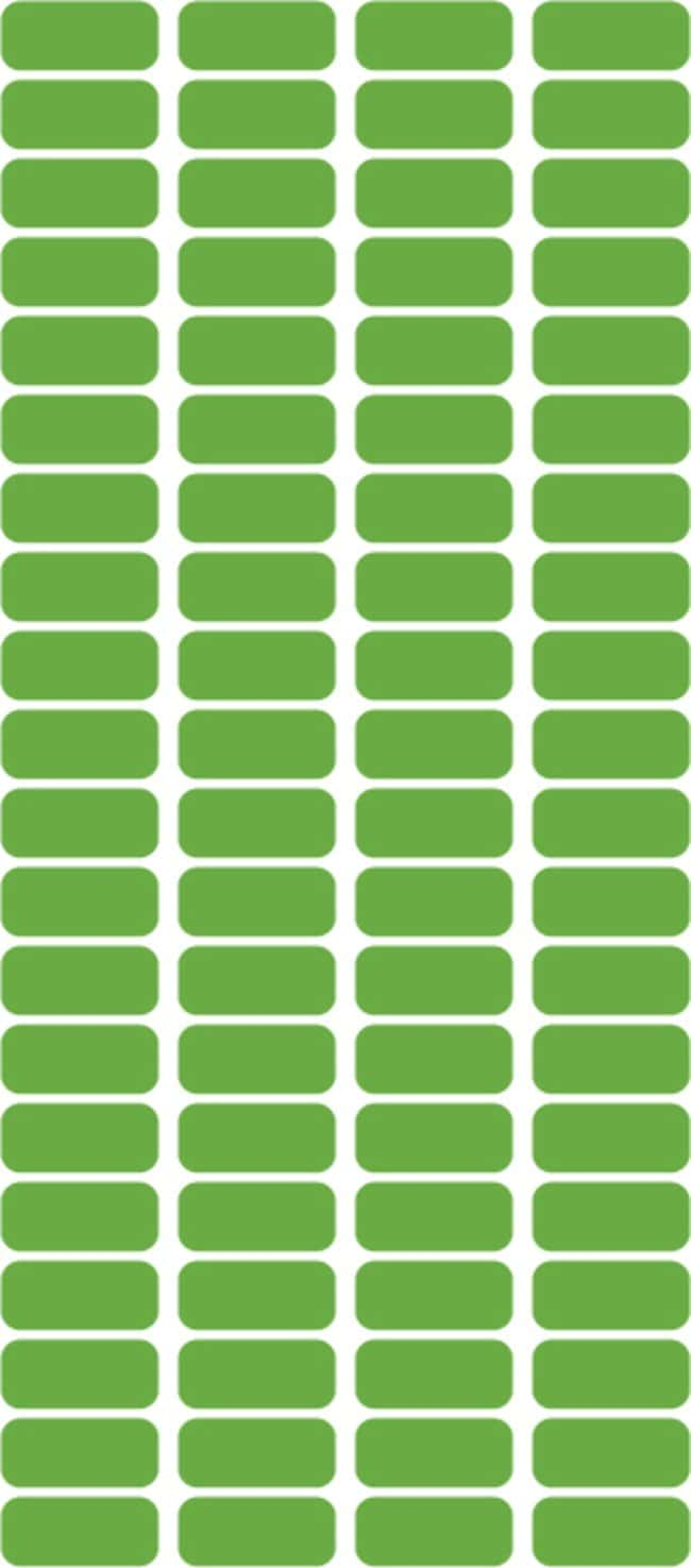 FisherbrandSquare Labels 0.4375 x 1 in. (1.11 x 2.54cm); Green; 1000/Roll:Facility