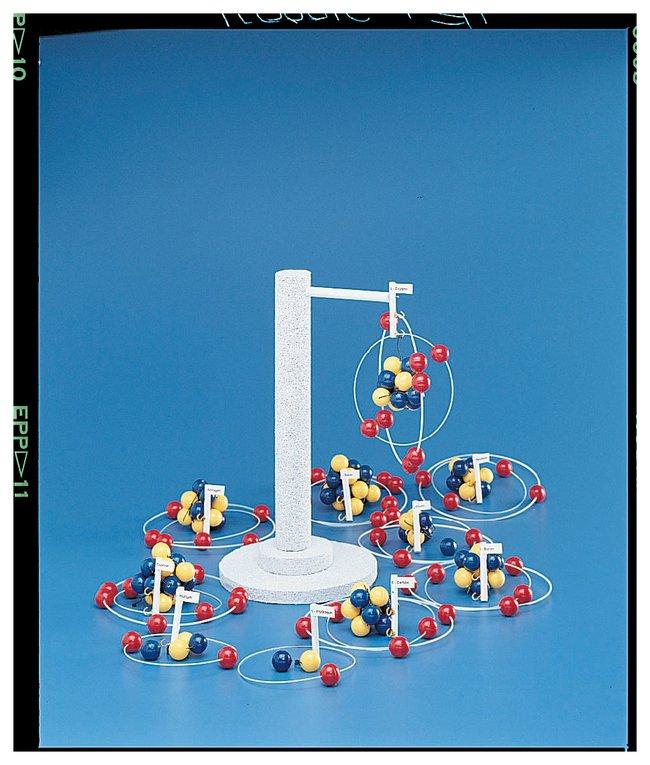 Atomic Models Set :Teaching Supplies:Chemistry Classroom