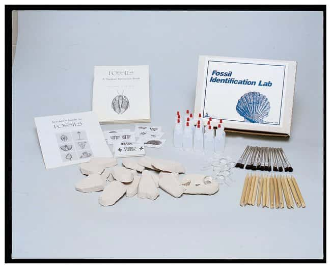 American Educational Products Fossil Identification Lab :Teaching Supplies:Earth