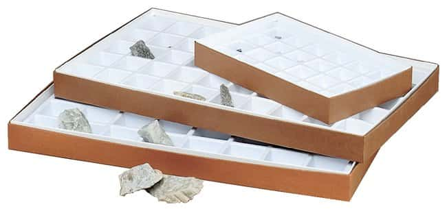 Compartmented Collection Boxes Teaching SuppliesClassroom Science Lab Fascinating Science Lab Furniture Collection