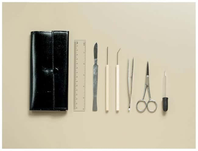 American Educational Products Wooden Handle Dissecting Set :Teaching Supplies:Biology