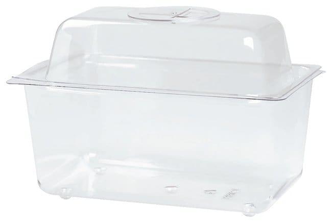 Clear Plastic Terrarium/Aquarium  Terrarium; 6L, with lid:Teaching Supplies