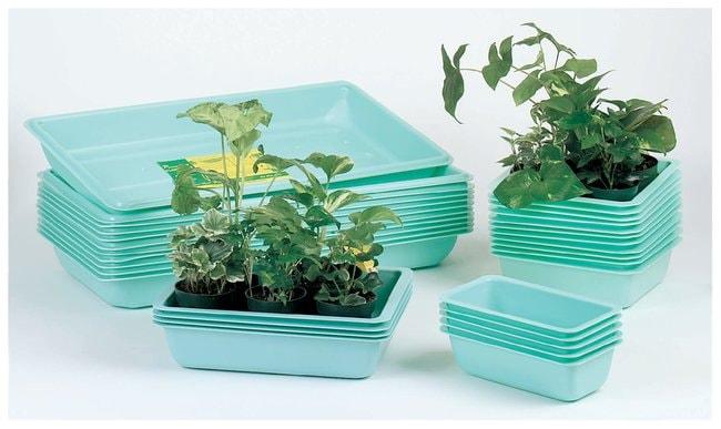 Plant Trays :Teaching Supplies:Biology Classroom