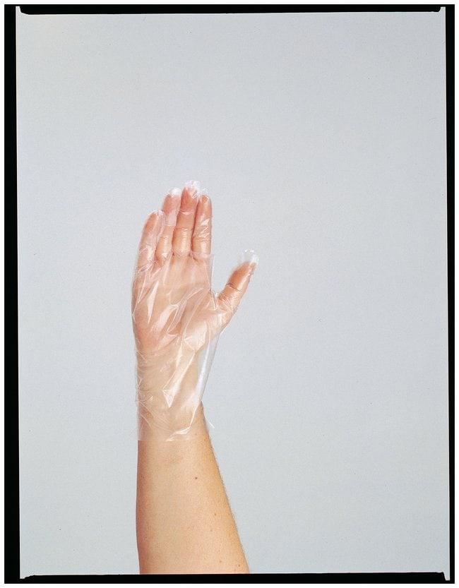 Disposable Polyethylene Food Service Gloves :Teaching Supplies:Classroom