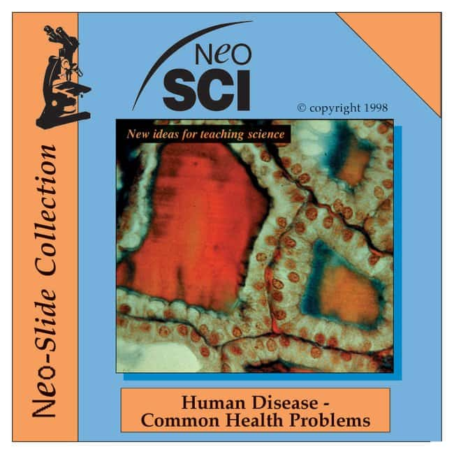Neo/Slide Collection CD-ROM :Teaching Supplies:STEM and Career Education