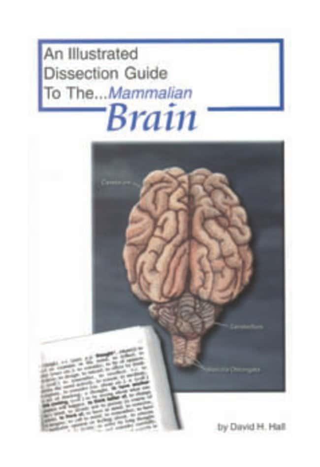 Mammalian Organ Dissection Guides  Dissect Guide Mammalian Brain:Teaching
