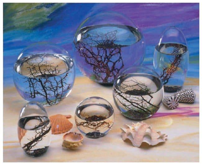 EcoSpheres :Teaching Supplies:Biology Classroom