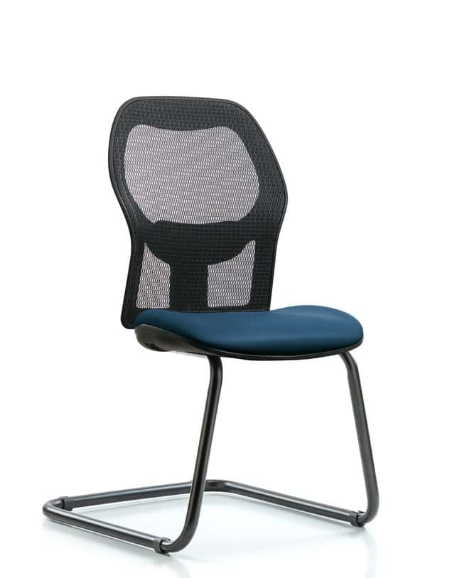 Fisherbrand Executive Windrowe Mesh Back Guest Chair with Grade A Seat