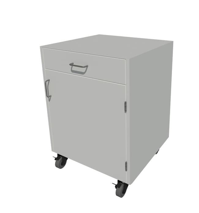 Fisherbrand Steel Mobile Cabinet::