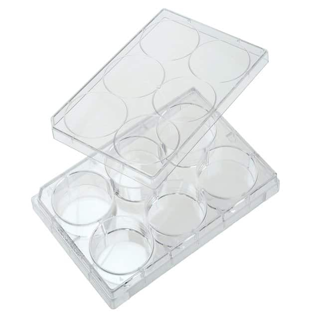 Quality Biological Inc6 Well Non-treated Plate with Lid, Individual, Sterile,
