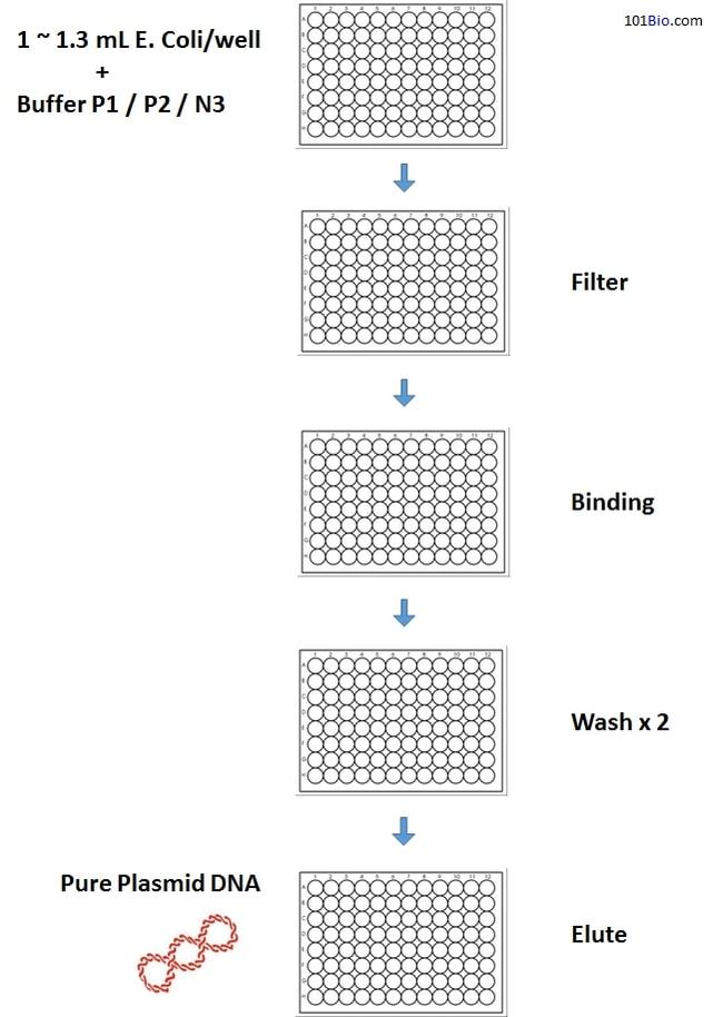 101 BIO PurePlasmid 96 Miniprep Kit (4x96 reactions)  PURE PLASMID 4X96