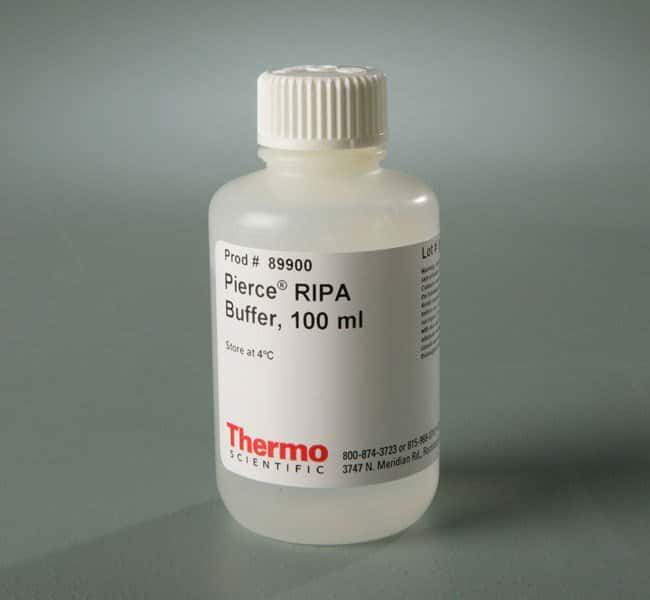 Thermo Scientific™ Pierce™ RIPA Buffer 100mL Thermo Scientific™ Pierce™ RIPA Buffer