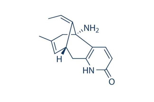Selleck Chemical LLC(-)-Huperzine A (HupA) 10mg 102518-79-6