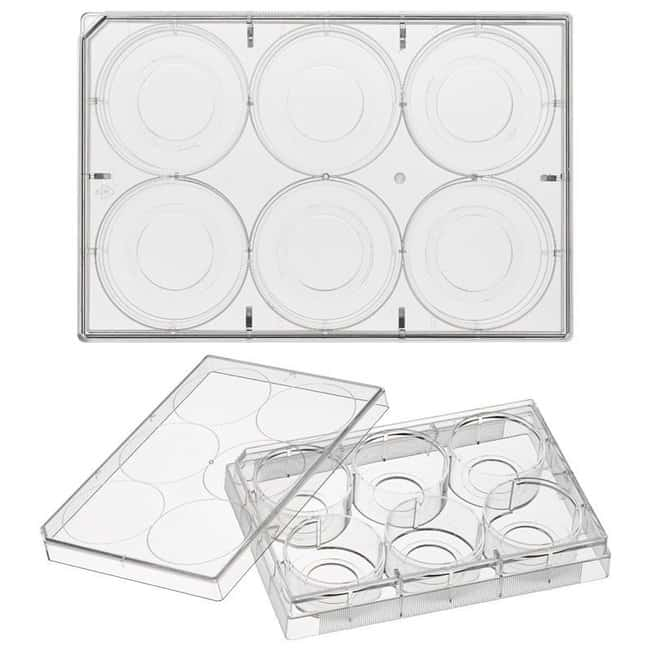 Chemglass Life Sciences Cell Culture Plate, 24-Well, Glass Bottom, 10mm