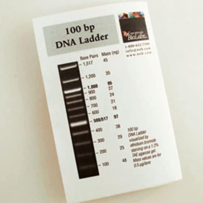 New England Biolabs Inc 100 Bp Dna Ladder 500 Gel Lanes 100 Bp Dna Fisher Scientific